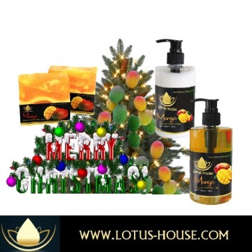 Organic Soaps and Lotions - Christmas Mango Gift Set