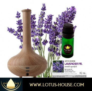 Essential Oil & Diffuser Starter Kit
