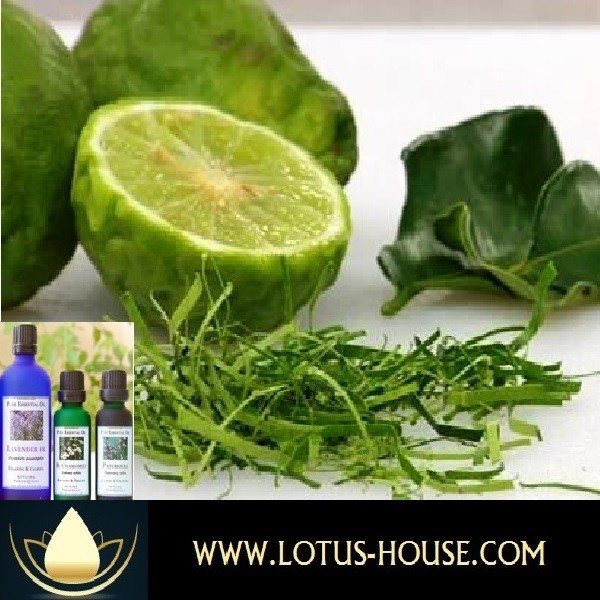 Pure Essential Oil Kaffir Lime Peel Lotus House