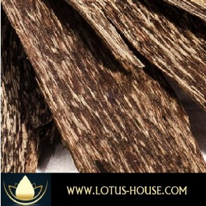 Agarwood Crassna 10% Essenial Oil @ Lotus House