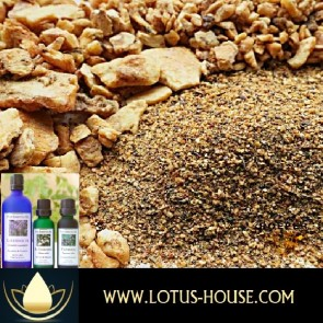 Benzoin Siam 50% Essential Oil @ Lotus House