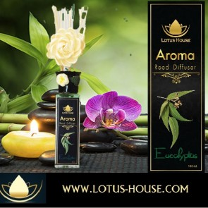 Eucalyptus Reed Diffuser @ Lotus House