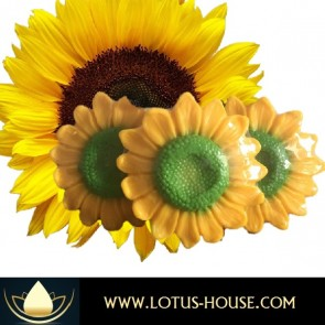 Sunflower Natural Soap @ Lotus House