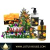 Christmas Mango Gift Set - Organic Soaps and Lotions